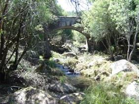 Limpieza de las márgenes del rio Cuerpo de Hombre