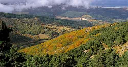 La declaración de Parque Natural para la Sierra de Candelario, una necesidad para frenar la especulación en la zona