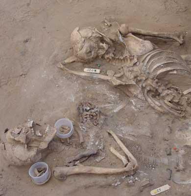 La web gubernamental de la Memoria Histórica registra 3 asesinatos realizados en la comarca bejarana